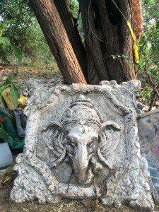 India_New Delhi_1042