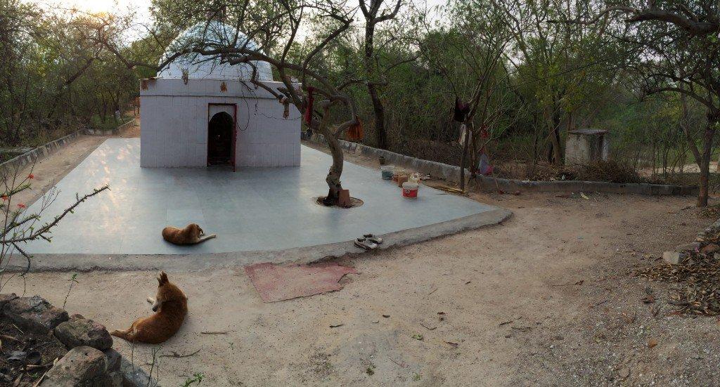 India_New Delhi_5615